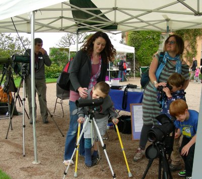 Killerton Wildlife Day - East Devon branch