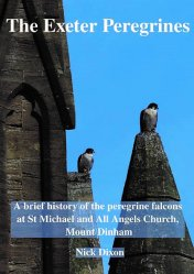The Exeter Peregrines booklet