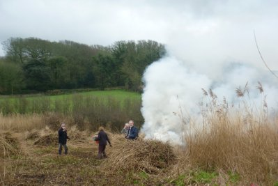 Reed cutting at South Miton Ley Jan 2016