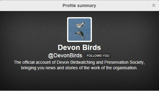 Devon Birds on Twitter