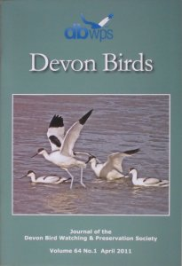 Devon Birds Journal April 2011